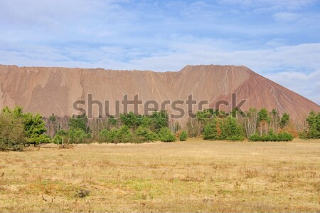 Zielitz potash salt dump 04 Stock photo © LianeM
