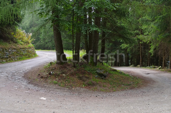 Stock photo: way with winding road