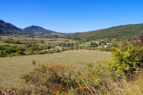 village Bugarach in southern France Stock photo © LianeM