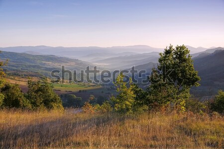 Corbieres, rural landscape in southern France Stock photo © LianeM