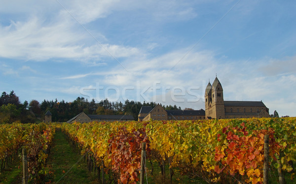 Zdjęcia stock: Opactwo · niebo · krajobraz · liści · zielone · kościoła