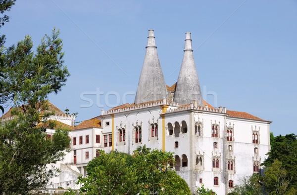 Sintra Palacio Nacional de Sintra 03 Stock photo © LianeM