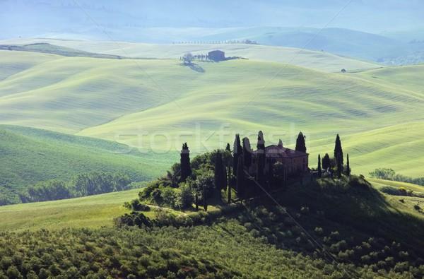 Toscana casa dente árvore primavera paisagem Foto stock © LianeM