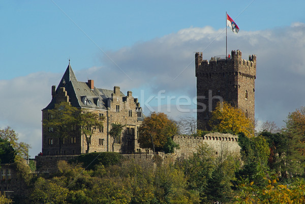 Bingen castle Klopp 02 Stock photo © LianeM