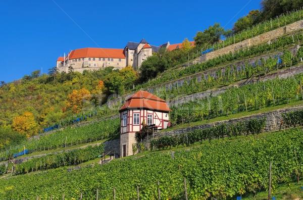 Freyburg castle  Stock photo © LianeM
