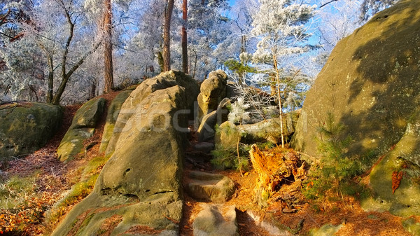 Hiking trail in the Elbe sandstone mountains Stock photo © LianeM