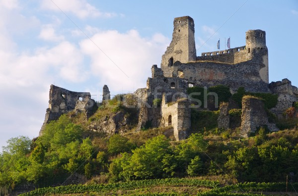 Senftenberg castle  Stock photo © LianeM