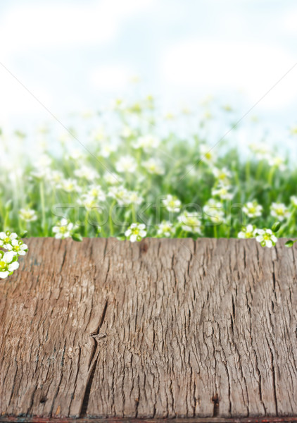 Easter background. Stock photo © lidante