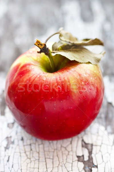 Wet red apple. Stock photo © lidante