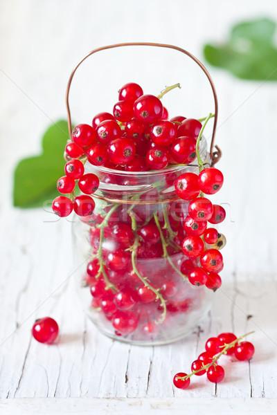 Redcurrant. Stock photo © lidante