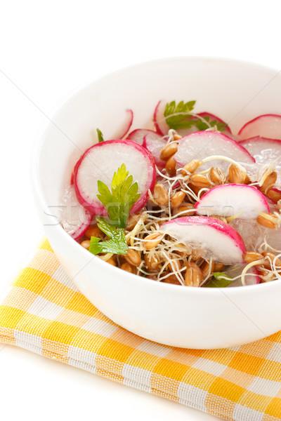 Spring salad. Stock photo © lidante