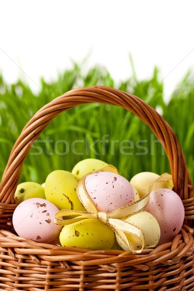 Paskalya yumurtası sepet bahar çim boya Stok fotoğraf © lidante