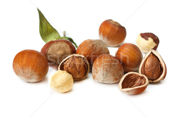 Garden hazelnuts. Stock photo © lidante
