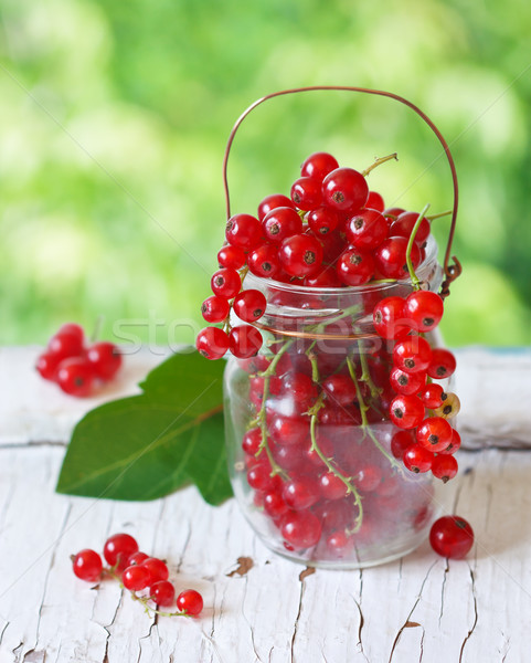 Redcurrant berries. Stock photo © lidante