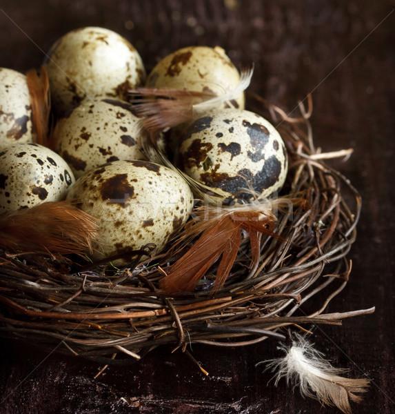 Quail eggs. Stock photo © lidante
