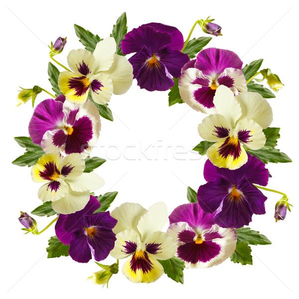 Blumen Kranz schönen weiß floral Rahmen Stock foto © lidante