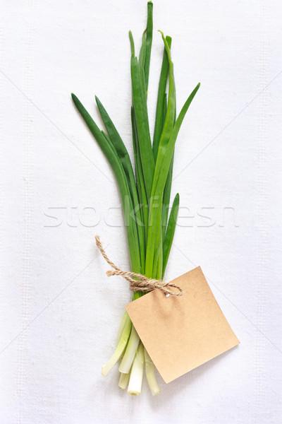 Cebollino frescos verde etiqueta blanco Foto stock © lidante