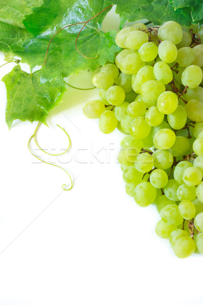 Grape. Stock photo © lidante