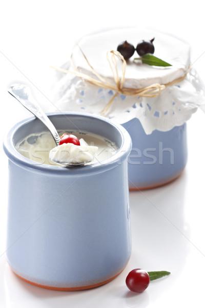 Yogourt savoureux baies alimentaire santé bleu Photo stock © lidante