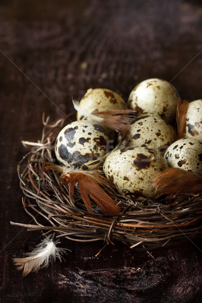 Quail eggs. Stock photo © lidante