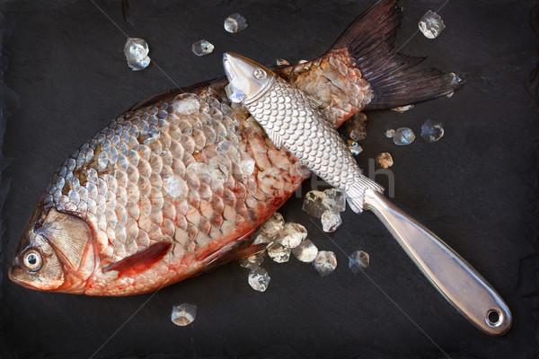 Fresco carpa peixe remoção balança preto Foto stock © lidante