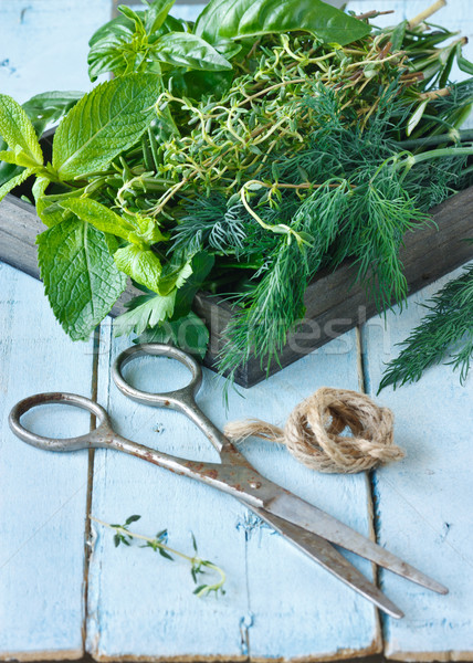 Herbs and scissors. Stock photo © lidante