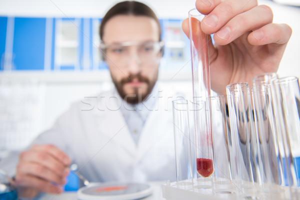 Bilim adamı deney tüpü genç erkek kimyasal Stok fotoğraf © LightFieldStudios