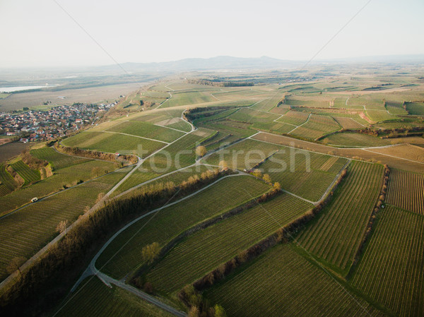 Aerial view of majestic landscape with green field, Germany Stock photo © LightFieldStudios