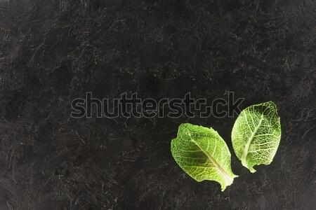 Top мнение зеленые листья свежие здорового капуста Сток-фото © LightFieldStudios