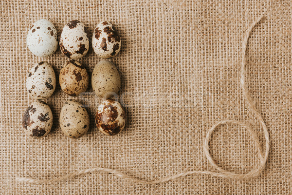 quail eggs laying in a rows on sackcloth with rope Stock photo © LightFieldStudios