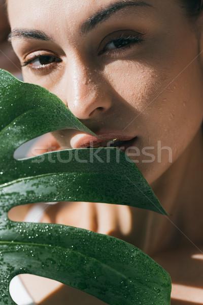 Nő nedves bőr portré fiatal gyönyörű nő Stock fotó © LightFieldStudios