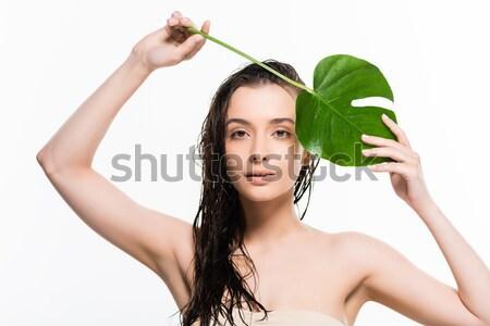 Güzel sarışın kadın yeşil yaprak yüz cilt bakımı Stok fotoğraf © LightFieldStudios