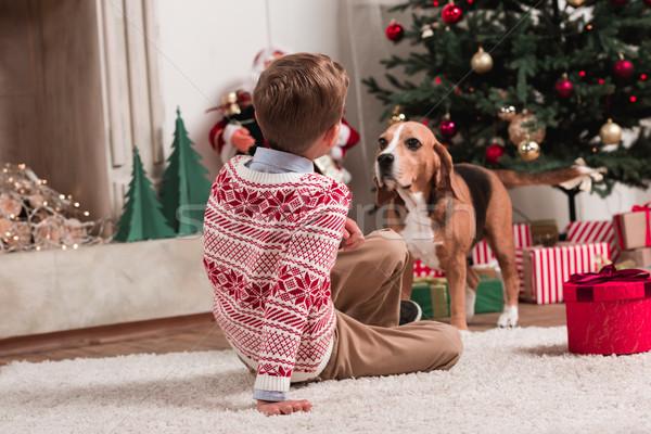 мальчика Beagle собака Рождества мало украшенный Сток-фото © LightFieldStudios