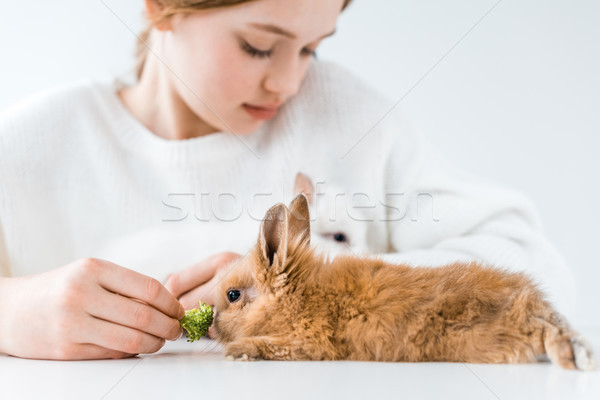 Shot cute meisje konijnen broccoli Stockfoto © LightFieldStudios