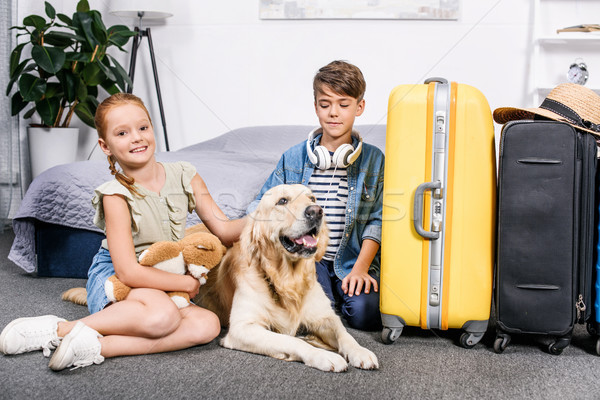 kids petting dog Stock photo © LightFieldStudios