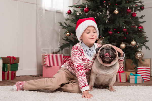 boy petting his dog on christmas Stock photo © LightFieldStudios