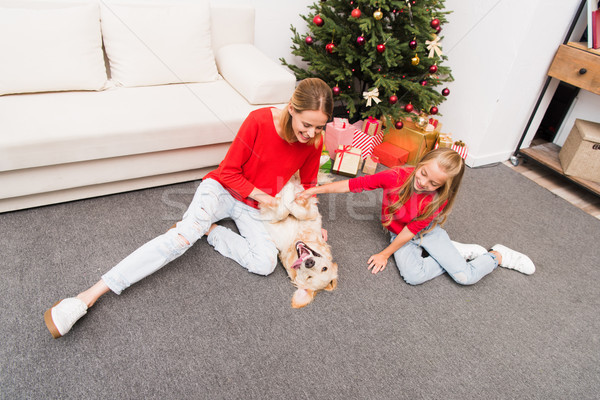family and dog at christmastime Stock photo © LightFieldStudios