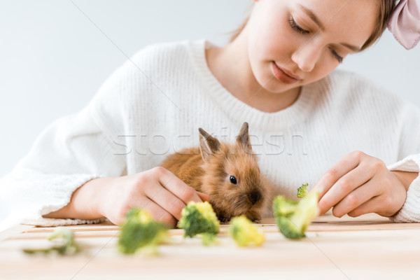 cropped shot of girl feeding cute furry rabbit with broccoli at wooden table   Stock photo © LightFieldStudios