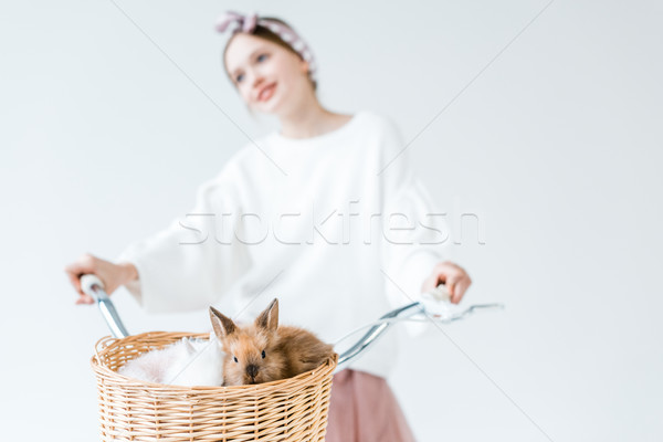close-up view of teenage girl riding bicycle with cute furry rabbits in basket Stock photo © LightFieldStudios