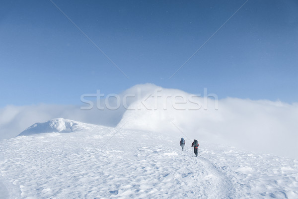 rear view of hikers walking on snowy mountains in winter, Carpathian Mountains, Ukraine Stock photo © LightFieldStudios