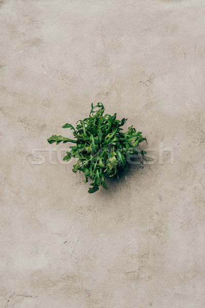 Bunch of green arugula leaves on light background Stock photo © LightFieldStudios