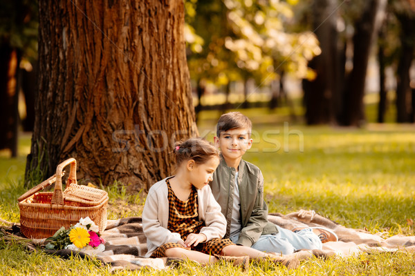 Kinderen picknickdeken weinig vergadering najaar park Stockfoto © LightFieldStudios