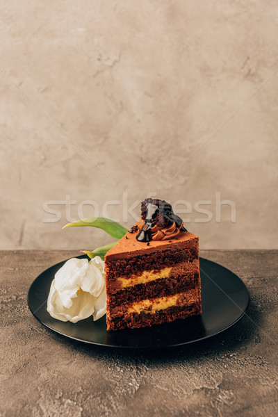 close-up view of delicious chocolate cake and beautiful tulip flower Stock photo © LightFieldStudios