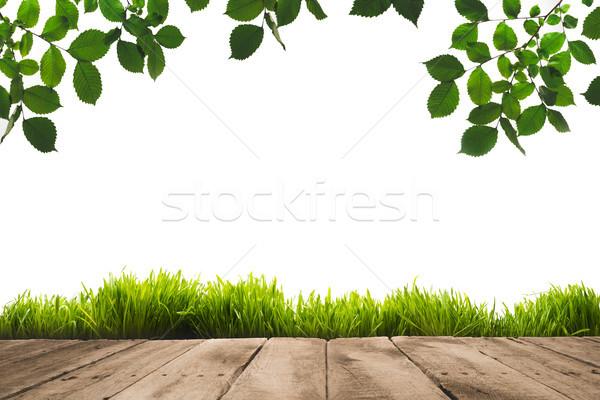 зеленые листья доски свет фон таблице Сток-фото © LightFieldStudios