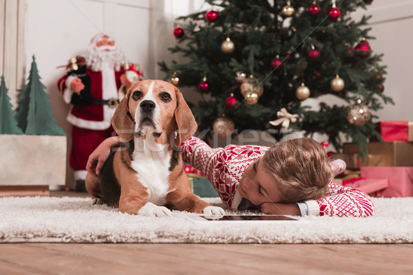 Stock photo: boy with beagle dog on christmas