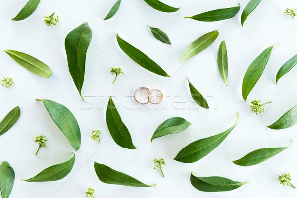 Vue belle mariage or anneaux Photo stock © LightFieldStudios