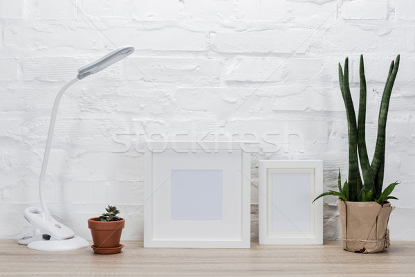 Stock photo: photo frames, plants and table lamp