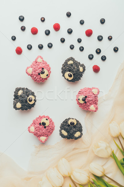 top view of gourmet cupcakes in shape of bears, fresh berries and tulip flowers   Stock photo © LightFieldStudios