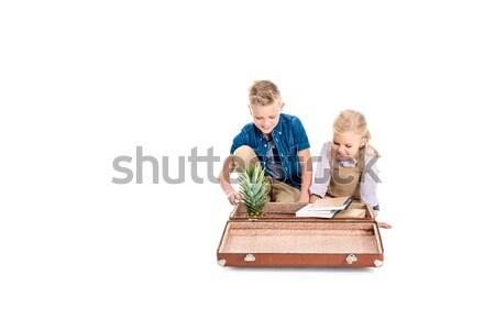 Сток-фото: дети · ананаса · книгах · чемодан · прелестный · мало