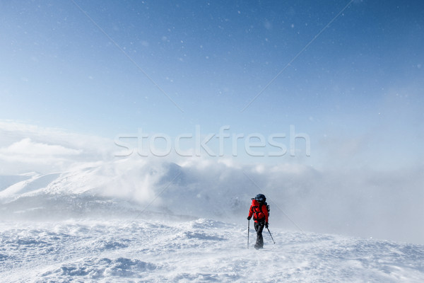 hiker walking on snowy mountains in winter, Carpathian Mountains, Ukraine Stock photo © LightFieldStudios